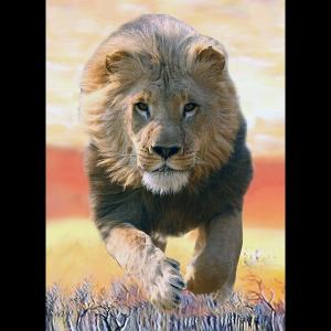 Фото лев на охоте