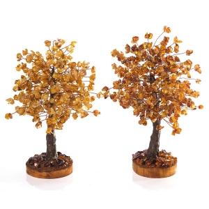 Деревья из янтаря для влюблённых